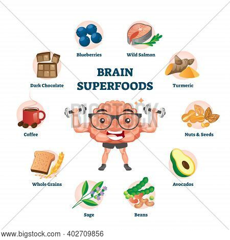 Brain Superfoods As Educational Nutrition Diet Products To Improve Memory