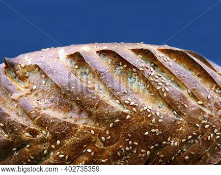 Delicious Fresh Baked Bread With Sesame Seeds On Dark Blue Background. Natural Bakery Products. Brea