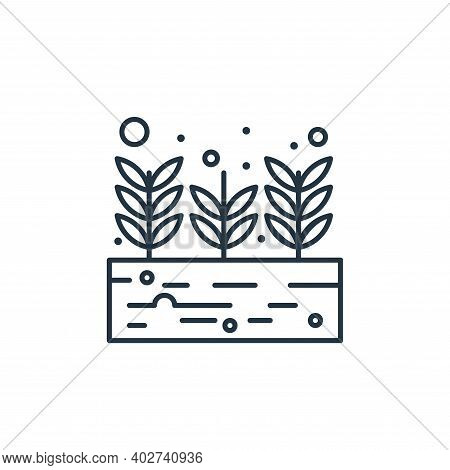 growing plant icon isolated on white background. growing plant icon thin line outline linear growing