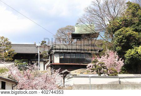 Medieval traditional japanese houses and storehouses in Bikan district, Kurashiki city, Japan. Sakura blooming season