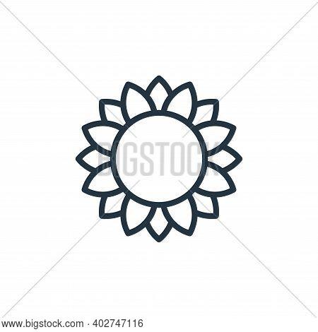 sunflower icon isolated on white background. sunflower icon thin line outline linear sunflower symbo