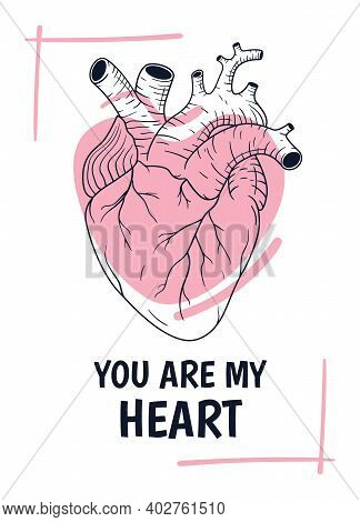 Vector Illustration Of Valentine's Day Greeting Card With Line Art Anatomical Human Heart And Lovely