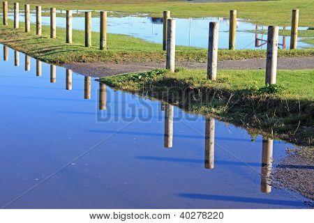reflections in a flooded coastal footpath, Scotland poster