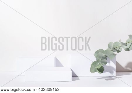 White Background For Cosmetic Products. Rectangular Podiums With The Shadow Of The Branches Of The E