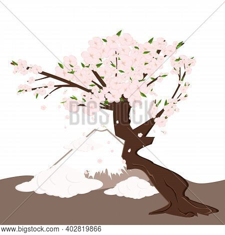 Cherry Sakura Blossom Tree With Falling Petals, Clouds And Mount Fuji. Flowers And Petals. Pink Asia