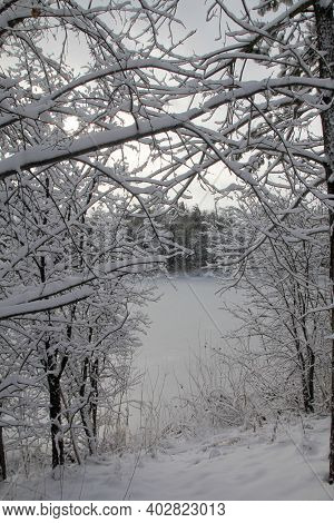 The Winter Landscape With Trees And Lake