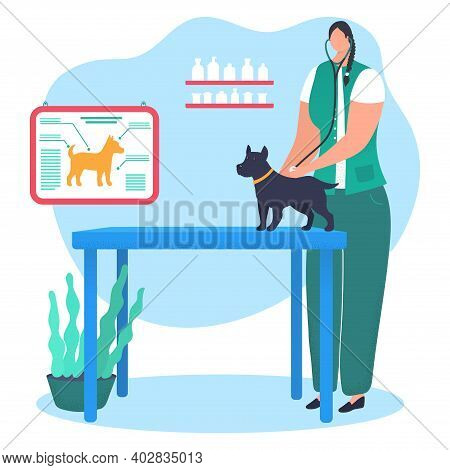 Woman Character Doctor Veterinarian Hold Stethoscope And Treat Pet Dog, Research Hound Disease Carto