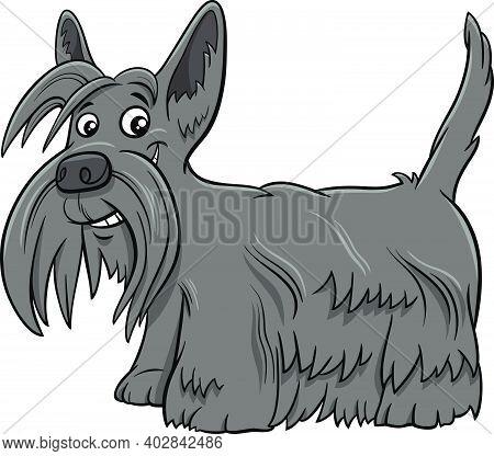 Cartoon Illustration Of Scottish Terrier Purebred Dog Animal Character