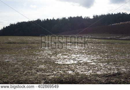 Soil On A Field In Agriculture, Usable Land And Arable Farming