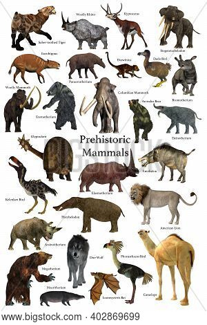Prehistoric Mammals 3d Illustration - A Collection Of Some Of The Better Known Mammals That Lived Du