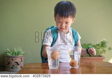 Happy Smiling Excited Little Asian School Kid Studying Science, Doing Fun And Easy Floating Egg Scie