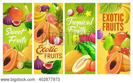 Fresh Tropical Fruits Vector Pineapple, Banana Or Pomegranate, Pear, Figs Or Watermelon With Papaya