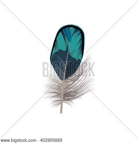 Bright Bird Feather. Beautiful Detailed Colorful Feather Of Exotic Bird Vector Illustration Isolated