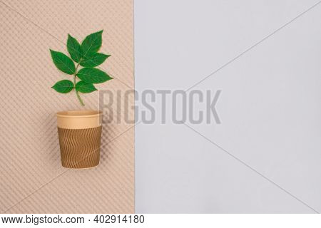 Mockup Image Of Eco-friendly Coffee To Go Cup - Kraft Paper Cup With Green Leaves Above On Light Gra