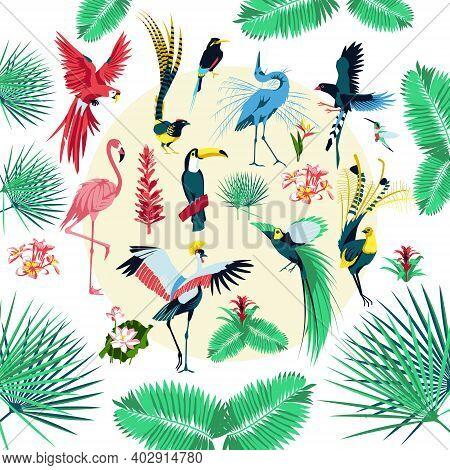 Tropical Birds And Plants. Exotic Jungle Background With Parrot, Toucan, Flamingo, Crane, Hummingbir