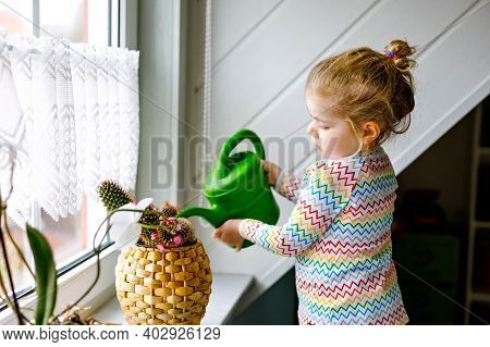Little Toddler Girl Watering Flowers And Cactus Plants On Window At Home. Cute Child Helping, Domest