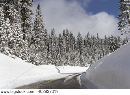 Winter Landscape With Road And Forest In Snow.