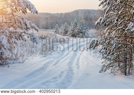 Winter, Lonely, Impassable Snow-covered Road Leading Into The Forest. Winter Landscape, Sun Rays, Sn