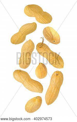 Set Of Falling Peanut Isolated On White Background