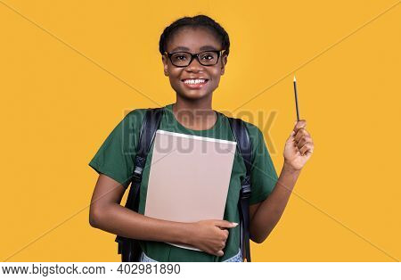 Inspiration. African American Female Student Having Idea Pointing Pencil Up Standing Posing With Boo