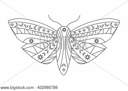 Gothic Moth Silhouette In Outline Style. Beauty Night Butterfly. Abstract Vector Illustration Isolat