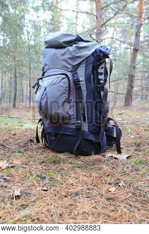 old tourist backpack on meadow in coniferous forest