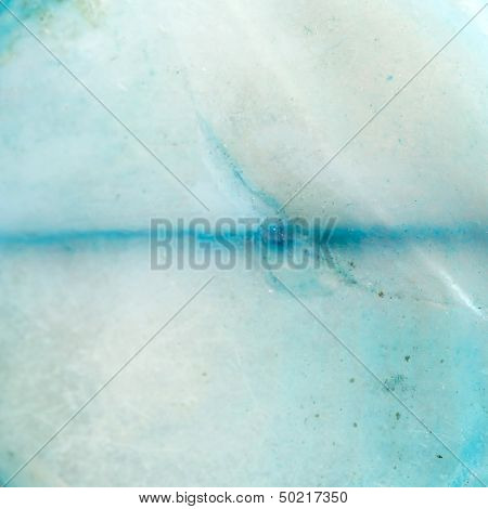 shell macro background