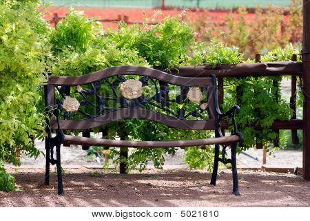 Park Bench In Wildflower Park
