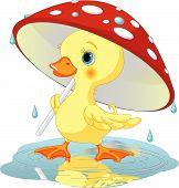 Cute duckling wearing rain gear under mushroom umbrella poster
