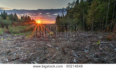 Area Deforested For Power Lines