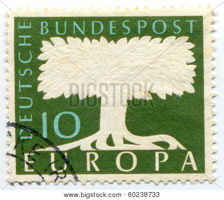 GERMANY - CIRCA 1970: Tree drawn on a German postage stamp, circa 1970