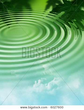 Water ripple in forest