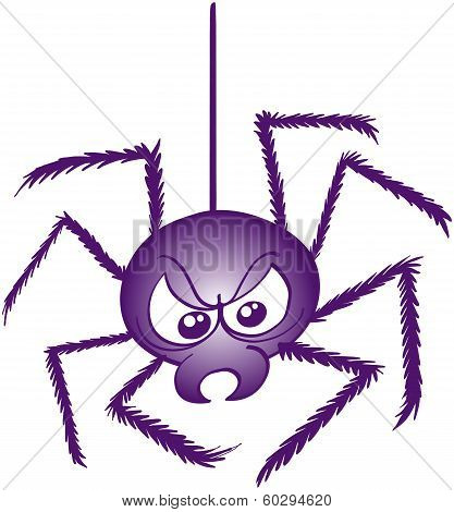 Scaring spider in angry mood