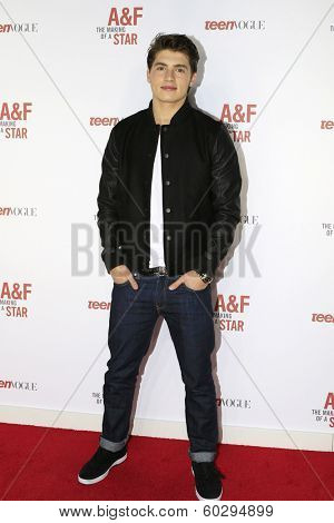LOS ANGELES - FEB 22: Gregg Sulkin at the Abercrombie & Fitch 'The Making of a Star' Spring Campaign Party on February 22, 2014 in Los Angeles, CA