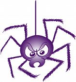 Terrific purple spider while going down thanks to its thread, showing a very bad mood and preparing to attack poster