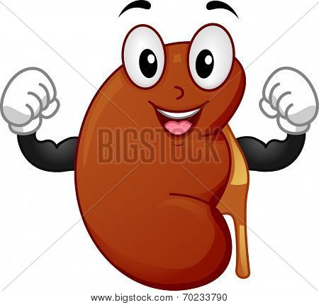 Mascot Illustration Featuring a Strong Kidney Flexing its Muscles