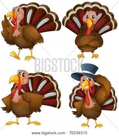 Illustration of a turkey set