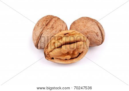 Cracked And Not Cracked Walnut Group Isolated On White Background