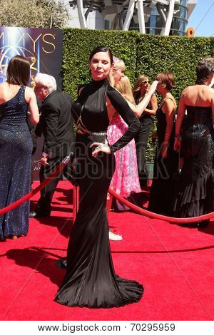 LOS ANGELES - AUG 16:  Christa Campbell at the 2014 Creative Emmy Awards - Arrivals at Nokia Theater on August 16, 2014 in Los Angeles, CA