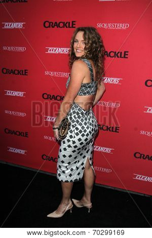 """LOS ANGELES - AUG 14:  Dina Meyer at the Crackle Presents the Premieres of """"Sequestered"""" and """"Cleaners"""" at 1 OAK L.A. on August 14, 2014 in West Hollywood, CA"""