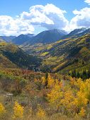 Vertical shot taken at the top of McClure Pass, Colorado at the height of fall color poster