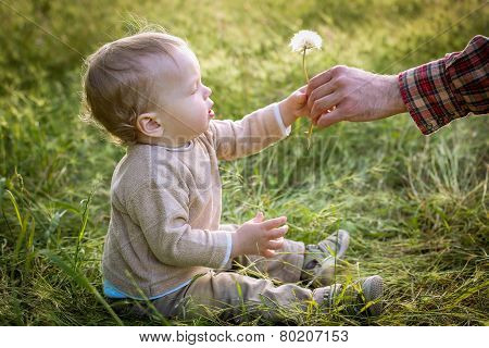 Cute Toddler Boy Looks At The Nature