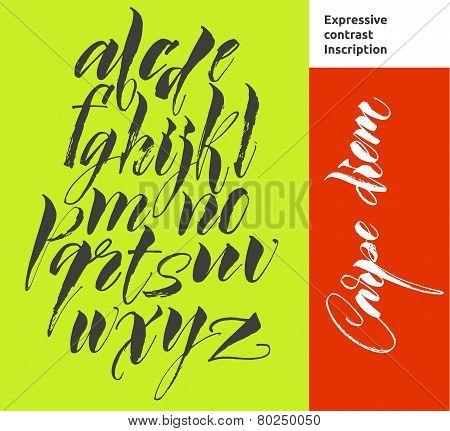 Alphabet letters: lowercase. Vector alphabet. Hand drawn letters. Letters of the alphabet written wi