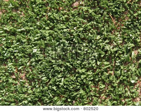 Artificial turf or grass