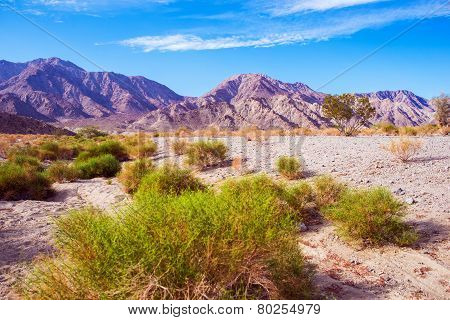 California Desert Lands. Coachella Valley in Southern California near La Quinta. Desert Landscape. poster