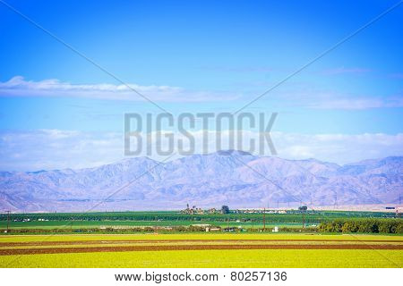 Southern California Farmlands. Coachella Valley Crop Fields. poster