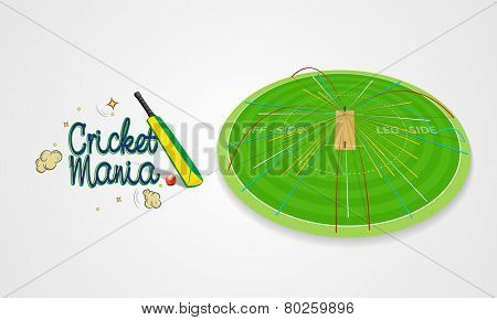 Green field stadium showing ball shot statistic in different colors with bat and ball for Cricket Mania.