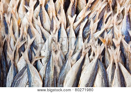 Stockfish At The Market