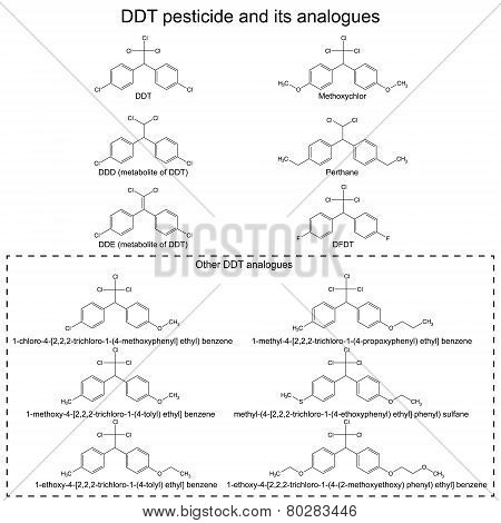DDT pesticide and its alanogues: DDD DDE methoxychlor perthane DFDT and others, 2d illustration, vector, eps 8 poster