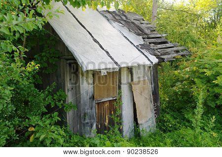 Old Ruined Hut In A Scrub